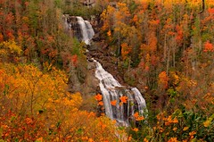 Whitewater Falls in Fall (FieldOfBrown) Tags: autumn orange usa fall nature water colors america river landscape waterfall nc nikon whitewater northcarolina falls waterfalls whitewaterriver whitewaterfalls