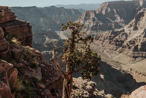 Trip Vegas - Canyon-62-2.jpg