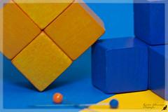 "(#3.263) ""Macro Mondays"" (unicorn 81) Tags: 150mm monday macromondays orange blue macro blau orangeandblue nahaufnahme closeupview"
