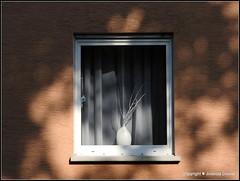 Ein Sommerabend (Jolanda Donné) Tags: abendsonne sommerabend lichtundschatten fenster einblick 18juli2015 nikoncoolpixp610