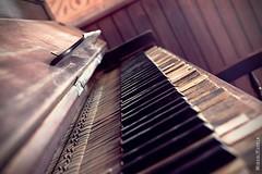 A la sombra en el salvaje oeste / In the shade in the wild west (Miguel Puerta) Tags: mpuerta 2017 canon fortbravo tabernas western oeste cowboys saloon piano pianola musica music teclas keys
