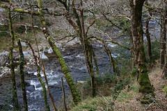 2JAC3265_exmoor_170313 (_husky_) Tags: devon exmoor exmoornationalpark fuji1655 fujixt1 nationaltrust somerset watersmeet