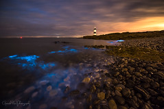Nature Glows (Gareth Mon Jones) Tags: sea blue night nature