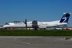 C-FJWE (WestJet Encore) (Steelhead 2010) Tags: westjet encore bombardier dhc8 dhc8q400 yyz creg cfjwe
