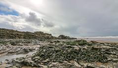 Ogmore Seaweed Coastline (Andy.Gocher) Tags: andygocher canon100d canon1018mm uk wales southwales ogmorebysea coast coastline sand sea seascape sky clouds seaside seaweed beach shore