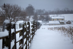 Fence Sitting Snow (T-3 Photography) Tags: battlefield fence friday antietam nationalparkservice nationalpark nps canon 5dmarkii 70200mmf4l