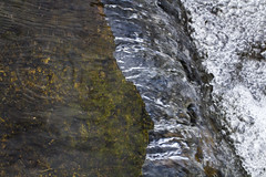 Water in Motion over a Green Ledge (brucetopher) Tags: stream brook water river cold texture winter moving waterfall rapid descend flow ripple green down bubble bubbles over