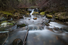 Thomas Cluderay 45 mins ·  Cascade Creek at Dawn. Lee Metcalf Wilderness, Mont. (Apr. 1, 2017) (Thomas Cluderay) Tags: montana wilderness leemetcalf outdoors nature hiking dayhike longexposure creek water stream moss forest gallatin photography naturephotography landscape landscapephotography