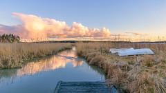 Only Way Out (Peter Vestin) Tags: nikondf sigma24mmf14dghsmart siruin3204x siruik30x adobecreativecloudphotography topazlabscompletecollection herrön skattkärr karlstad värmland sweden vänern nature landscape seascape sunset
