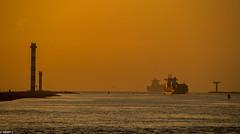 06/04/2017   Rozenburg (SB-2013) Tags: port rotterdam photography landtong rozenburg ship vessel spotting hoek van holland