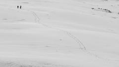 Minimal photo walk (Stefano Montagner - The life around me) Tags: bordeaux france francia stefanomontagner thelifearoundme travel trip dunes dupilat sand wind