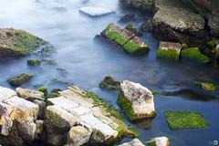 Ruinas ([Nelooo]) Tags: piedras muro pared mar agua río seda largaexposicion algas verde demolido ruinas