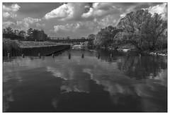 A special look at the river 'Ruhr' (Wayne Interessiert's) Tags: landschaft landscape paysage wolken clouds nuages himmel sky ciel monochrome bw blackwhite noiblancphoto wasserspiegelung waterreflexion réflexiondeau bäume arbre trees river fleuve