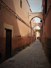 on the street where I live (SM Tham) Tags: africa morocco marrakech oldmedina walledcity unescoworldheritagesite derbjdid street walls arches doorway windows cats people sky outdoors