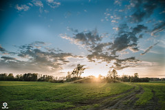 Miracle (I Love Canon <3) Tags: sunset sun landscape poland polska clouds wielkopolska grea greaterpoland pudliszki trees fields green grass canon 6 d 6d eos ef24105f4lisusm 24 outdoor travel