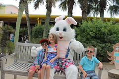 Easter Bunny 064