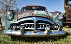 Hungry (RootsRunDeep) Tags: packard old car vehicle aged patina color rust ruin patrician 1951 wyoming