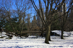 Central Park in Snow (lefeber) Tags: city nyc newyorkcity bridge trees urban snow newyork architecture landscape downtown skyscrapers centralpark