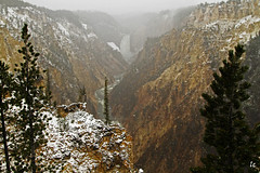 Snowing in May, Lower Yellowstone Falls, IMG_9324 (lycheng99) Tags: winter snow mountains nature river landscape waterfall nationalpark falls yellowstonenationalpark yellowstone snowing wyoming snowfall yellowstonefalls snowmountain loweryellowstonefalls infinitexposure