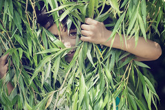 fun in the garden (Philippe Put) Tags: boy tree cute green nature smile grass garden fun happy child indian lawn handsome free happiness excited laugh mixedrace toddler4yearold hidingfoliage