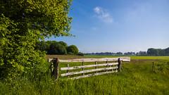 WP_20140517_09_10_59_Raw__highres (rosstek) Tags: landscape nokia raw farmland groningen 1020 carlzeiss dng noordlaren lumia pureview nokia1020 lumia1020 nokialumia1020