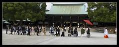 Meiji Shrine @Tokyo, Japan (brunombo) Tags: travel wedding red japan umbrella tokyo shrine pentax kimono procession tamron rosso viaggio matrimonio giappone meiji ombrello meijishrine processione tamronaf18250mmf3563diiildasphericalifmacro justpentax