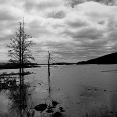 Lac St. Charles (1 of 2) (theaterculture) Tags: lake nature clouds square landscape spring quebec printemp lacstcharles