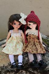 Pippin & Wendy (anthrogirl14) Tags: tan bjd custom 13 ante juri faceup fairylandbjd littlefee