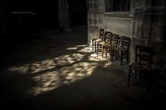oasis de luz (salvix.) Tags: