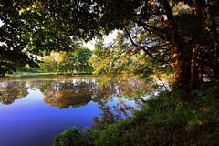 early in the morning. (MarcelXYZ) Tags: morning lake tree sunrise canon landscape mirror scenery drohiczyn cesarz marcelxyz