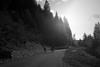 "La montagna suona Burzum • <a style=""font-size:0.8em;"" href=""http://www.flickr.com/photos/49429265@N05/14153795370/"" target=""_blank"">View on Flickr</a>"