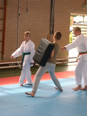 "zomerspelen 2013 karate clinic • <a style=""font-size:0.8em;"" href=""http://www.flickr.com/photos/125345099@N08/14220622950/"" target=""_blank"">View on Flickr</a>"