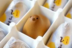 吉野堂ひよ子饅頭 Hiyoko Manju (disneyland.kid) Tags: white japan japanese anniversary paste bean chick 100th sweets 日本 1912 fukuoka kyushu manju wagashi 九州 福岡 hakata 博多 hiyoko 和菓子 饅頭 ひよこ 100年 名菓 創生100年