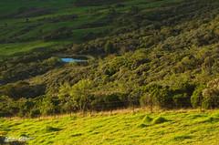 Sur la route du Volcan (robertgeb) Tags: de la ile du route runion volcan le