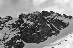Chamois (samuelloz) Tags: italien mountain mountains italia valle italie valledaosta chamois
