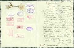 TTomi 19360810 Tomislav Tkali poslao sestri Dorici sa Bleda 10.VIII.1936. (Morton1905) Tags: t sa sestri bleda tomislav 2555 tkali dorici ttomi 19360810 poslao 10viii1936