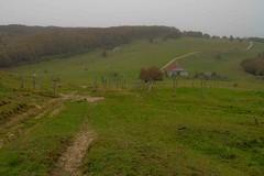 La ferme du Retord (J-Dell) Tags: c traverse f foret sentier ferme chemin ligne grillage piste allee barbelé laie cloture layon tortille