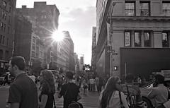 fifth avenue flare (SHARPSHOOTA.com) Tags: new york city nyc bw film nycpb pentax brian trix gothamist limited flatiron 31mm pz1p ramnath eataly justpentax sharpshootacom