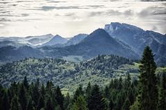 Pieniny, Poland June 2014 (Smo_Q) Tags: trip mountains nature poland polska polen polonia  pieniny   palenica  pentax k5