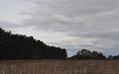 . Farm 2082, Murrami NSW