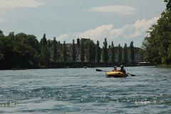 Schlauchboot - Gummiboot unterwegs auf dem Rhein ( Fluss - River ) oberhalb St. Katharinental im Kanton Thurgau in der Schweiz (chrchr_75) Tags: rio ro river boot schweiz switzerland boat europa suisse swiss fiume rivire juli reno christoph svizzera fluss rhine rhein strom rin rijn jolla canot dinghy bote schlauchboot 2014 rivier  suissa joki rzeka jolle gummiboot flod sloep rhin chrigu 1407 hochrhein  rhenus chrchr hurni chrchr75 chriguhurni chriguhurnibluemailch albumrhein gummiboote juli2014 hurni140706 albumrheinsteinamrheinrheinfall albumhochrhein