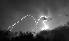 Lightning Over Trees (truan) Tags: sky storm bolt lightning
