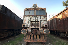 Where Trains Go To Die... (Nicolaiona) Tags: abandoned railway bulgaria coal derelict diesal traingraveyard oldtrains abandonedlocomotives abandonedsteamtrains