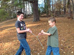 Wishing for more Virginia State Park fun in 2017 (vastateparksstaff) Tags: wishbone boys family friends stick outdoor hollidaylakestatepark leaves woods trail tree