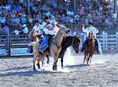P3110214 (David W. Burrows) Tags: cowboys cowgirls horses cattle bullriding saddlebronc cowboy boots ranch florida ranching children girls boys hats clown bullfighters bullfighting