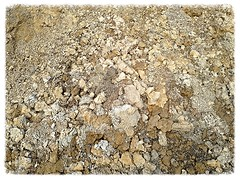 (ladybugdiscovery) Tags: dirt edited clay shades earth