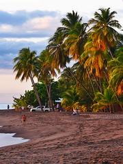 Le soleil en a marre (il se couche). (Guerrier !) Tags: cocotiers lecarbet martinique beach sunset crépuscule coucherdesoleil