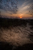 wiadukt (Patryk Krzyzak) Tags: bojanow bridge dusk foto nowadeba patrukkgmailcom patrykkrzyzak podkarpacie poranek ranek spring subcarpatia sunrise wiadukt wiosna wschodslonca patryk krzyzak patrykkrzyżak photo photography fotografia