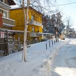 Болгарское, зимнее thumbnail