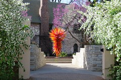 Into the Ellipse Garden (Patricia Henschen) Tags: chihuly dalechihuly ellipse glass sculpture redbud tree trees crabapple pathscaminhos colorado denver denverbotanicgardens botanicgarden botanic garden gardens spring